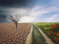 """Europa: Klimaneutraler Kontinent – Immobilien und """"Grüner Deal"""""""